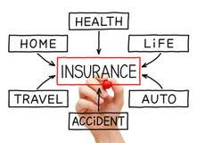Mano del organigrama del seguro Imagen de archivo