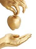 Mano del oro que da la manzana Imagenes de archivo