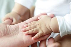 Mano del padre y del bebé Fotografía de archivo