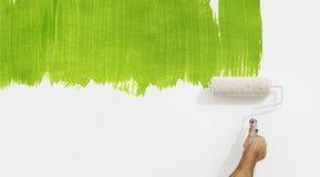 Mano del rullo di pittura che dipinge colore verde isolato sulla parete in bianco Immagini Stock