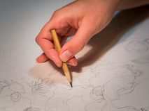 Mano del ` s de la mujer que celebra un lápiz y un dibujo flores en watercolo Imágenes de archivo libres de regalías