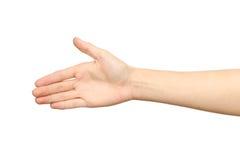 Mano del ` s della donna pronta per handshake Immagine Stock