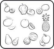 Mano del vector de las frutas dibujada Imagenes de archivo