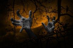 Mano del zombi que sube hacia fuera de la cerca vieja sobre el árbol muerto, cuervo, luna imagen de archivo libre de regalías