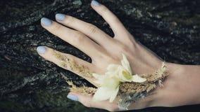 Mano della donna che segna albero, tenerezza Mano di una ragazza con un manicure blu stock footage