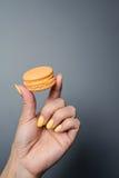 Mano della donna che tiene un macaron fotografia stock