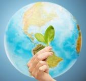 Mano della donna con il germoglio verde sopra il globo della terra Fotografia Stock