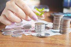 Mano della donna di affari che calcola i suoi soldi con la pila di moneta Immagine Stock