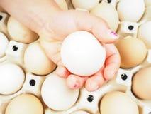 Mano delle bambine che tiene un uovo del pollo Fotografie Stock