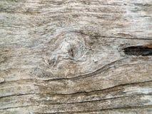 Mano di Babys sul pavimento di legno Fotografie Stock