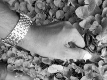 Mano di pace Fotografia Stock