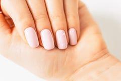 Mano di Woman's con il bello manicure immagini stock libere da diritti