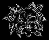 Mano dibujada del ejemplo de las flores Imagen de archivo libre de regalías