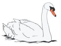 Mano dibujada, vector, EPS, logotipo, icono, ejemplo del vector EPS del cisne de la silueta por los crafteroks para diversas apli stock de ilustración