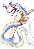Mano e serpente Immagini Stock