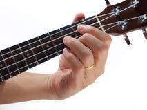 mano ed ukulele fotografie stock
