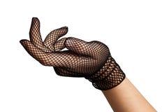 Mano elegante - guanti del merletto fotografia stock libera da diritti
