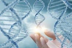 Mano en las ayudas del guante de la molécula de la DNA Imagen de archivo libre de regalías