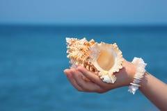 Mano femenina con el seashell en la costa Imagen de archivo libre de regalías