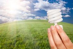 Mano femenina con la bombilla ahorro de energía sobre Fie Imagen de archivo libre de regalías
