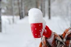 Mano femenina del invierno que sostiene una taza roja Imagen de archivo