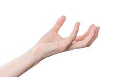 Mano femenina que ase o que se sostiene alrededor del objeto aislado en blanco Imagenes de archivo