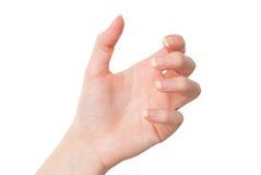 Mano femenina que lleva a cabo algo con la palma aislada en blanco Imagen de archivo libre de regalías