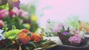 Mano femenina que salpica las flores usando un cierre de la botella del espray para arriba Mano con agua de rociadura de la botel almacen de video