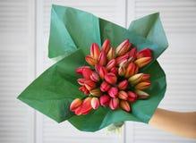 Mano femenina que sostiene el ramo de tulipanes frescos Imagenes de archivo