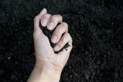 Mano femenina que sostiene un puñado de suelo fértil rico que se ha cavado nuevamente encima o se ha labrado en un concepto de pr Foto de archivo libre de regalías