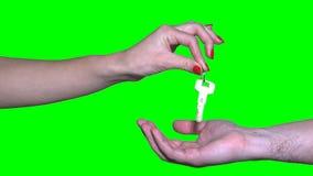 Mano femminile del venditore del bene immobile che fornisce le chiavi al compratore maschio su verde video d archivio