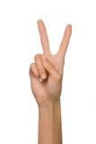 Mano femminile isolata della donna aperta vuota nella posizione del segno e del numero due di pace su un fondo bianco Immagini Stock Libere da Diritti