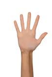 Mano femminile isolata della donna aperta vuota in una posizione del numero cinque su un fondo bianco Immagine Stock