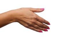 Mano femminile nella posizione della stretta di mano. Immagini Stock