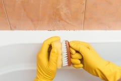 Muffa in bagno fotografia stock. Immagine di lavata, sporco - 59024242