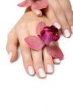 Mano hermosa con la manicura y la orquídea del clavo Imagen de archivo libre de regalías
