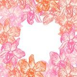 Mano hermosa de la orquídea del fondo del verano dibujada alrededor del bosquejo del contorno del rosa de la tarjeta, lugar para  Fotografía de archivo