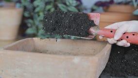 Mano hodling una pala de la planta con medios o suelo de crecimiento metrajes
