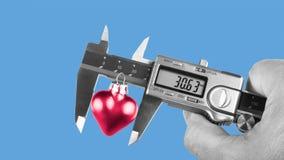 Mano humana blanco y negro que sostiene un calibrador al medir un corazón rojo foto de archivo