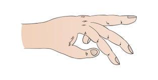 Mano humana con señalar el dedo anular libre illustration