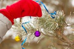 Mano humana que adorna el árbol de navidad al aire libre Fotos de archivo