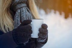 Mano inguantata del guanto che tiene una tazza di viaggio Fondo nevoso della foresta di inverno Fotografia Stock