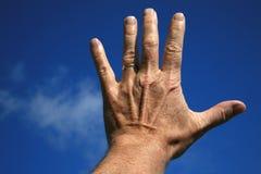 Mano izquierda del hombre Fotografía de archivo