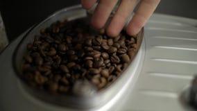 Mano maschio che tocca i chicchi di caffè archivi video