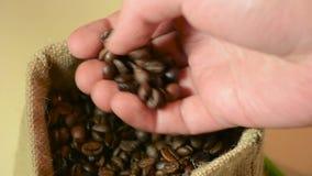 Mano masculina que lleva a cabo calidad de los granos y del control de café almacen de video