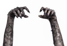 Mano negra de la muerte, el caminar absolutamente, tema del zombi, tema de Halloween, manos del zombi, fondo blanco, manos de la  Foto de archivo libre de regalías