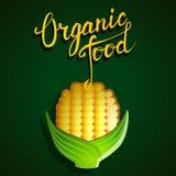 """Mano originale che segna il  e la verdura con lettere """"Organic del food†Fotografie Stock"""