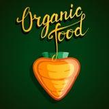 """Mano originale che segna il  e la verdura con lettere """"Organic del food†Immagini Stock"""