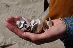 Mano por completo de shelles Foto de archivo