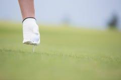 Mano que celebra la bola y la camiseta en el campo de golf Foto de archivo